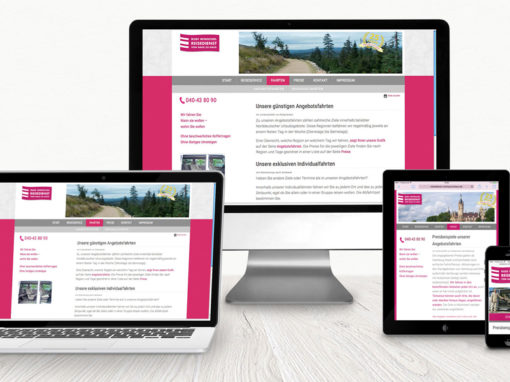 Website, Logoentwicklung, Flyer, Anzeigen